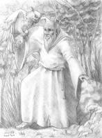Druid by raphaeljesus