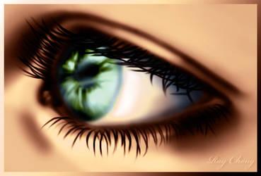 The Beautiful Eye by RayTheValentine