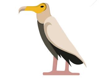 Hieroglyphs Vocab Card - Egyptian Vulture by ZoraShah
