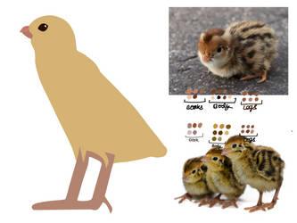 Hieroglyph Vocab Card - Quai Chick - Process by ZoraShah