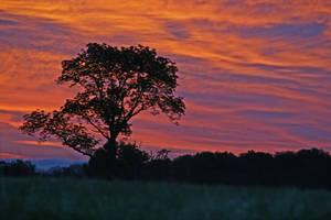 Sunrise by mim304