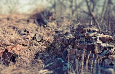 Ruins by ElectricSixx