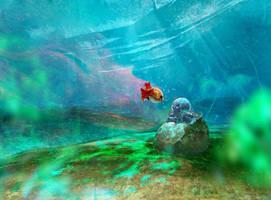 Underwater journey 2 by APetruk