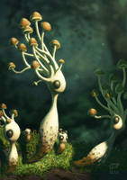 Mushrooms by AndrewMcIntoshArt