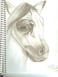 Horse's Dreams by PsycoEmoRainbow