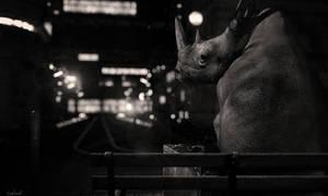 A Stranger in Town by Conlaodh