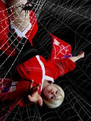 Spider's Web by Schlangenschatten