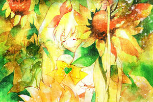 Heartcatch Precure:Sunshine by muttiy