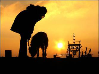 Coast - untill the sun sets by Profiratte