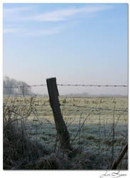 Friesland by Profiratte