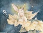 Moth Faery by Kaelycea