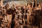 Stock: Rotten Tree by LissaMonster