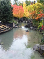 Beautiful Scenery by NowakixHiroki-Fan