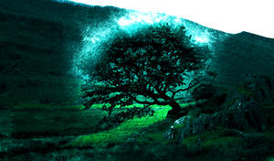 Tree of life by wazzy88