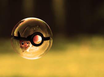 The Pokeball of Eevee by wazzy88