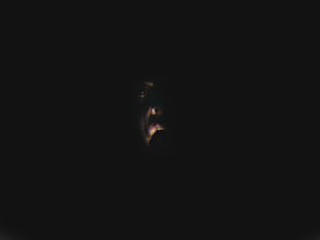 silent scream by BL00DG0D