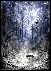 Cold December Moon by Sieskja