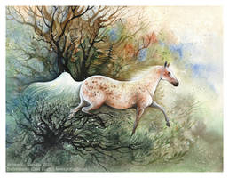 Amira by Sieskja
