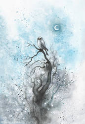 Owl on a tree by Sieskja