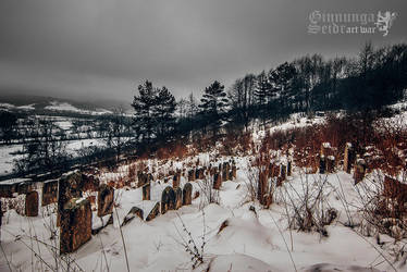 Old Jewish Cemetery by GinnungaSeidr