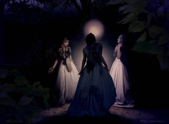 3 Witches by Vegvisir