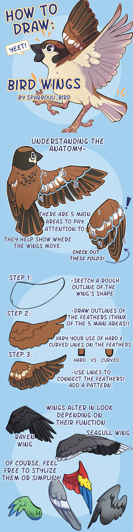 How to Draw Bird Wings by SPARROUU