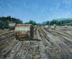 Summer landscape by angryskipper