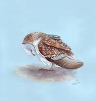 Sleepy Owl by IreneShpak