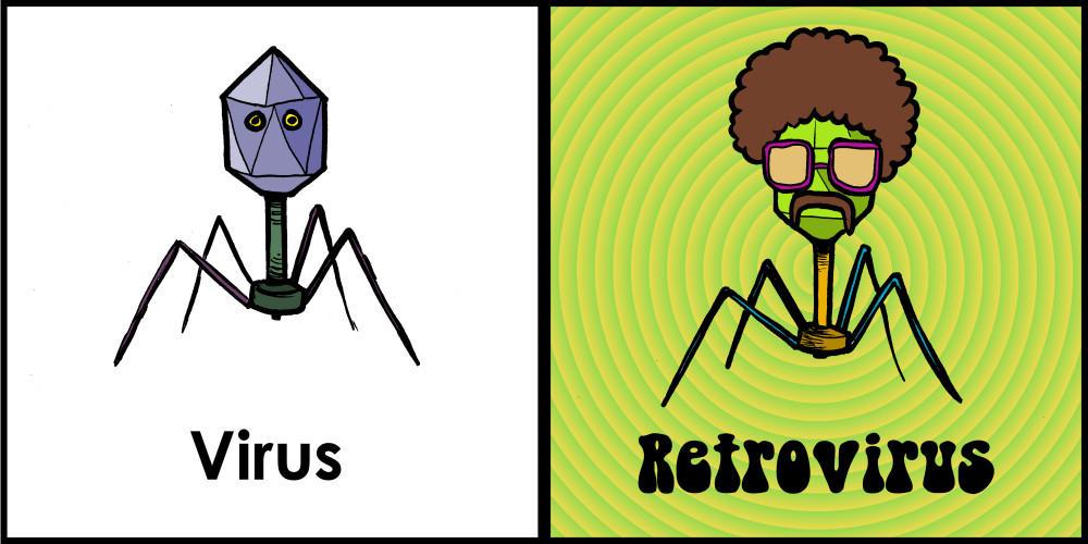 Výsledek obrázku pro retrovirus