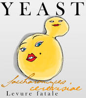 Model Organisms :: Yeast by Velica