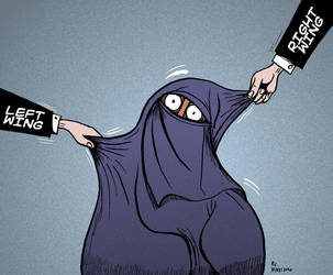 The curious case of the niqab by Velica