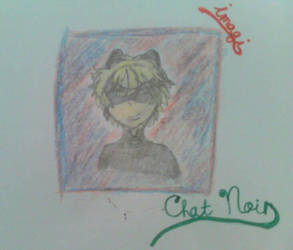 Chat Noir (ML) by Imagination7