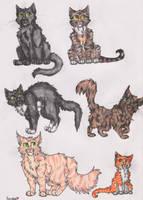Bunch Of Cats by Spinnenpfote6