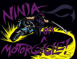 Ninja on a Motorcycle by CrazyChucky