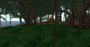 Isla Draconia - The Jungle by ZauberParacelsus
