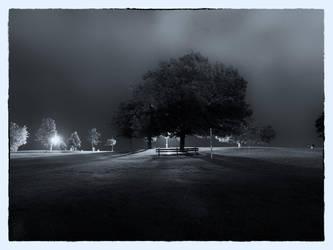 Black and White Night 10 by lightzone