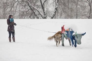 winter by straszak