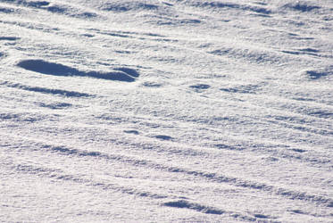 Snow 8 by dark-silva