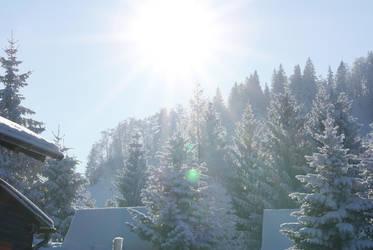 Snow 12 by dark-silva