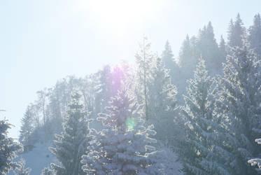 Snow 13 by dark-silva