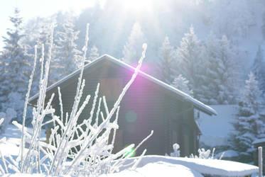 Snow 15 by dark-silva