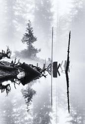 Survival by reflektenlight