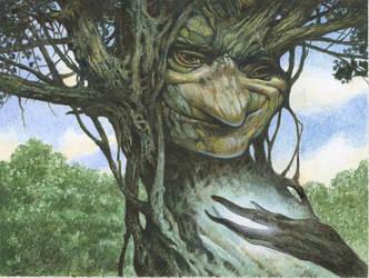 Lorwyn Tree Wizard by bridge-troll