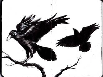 Moleskine #4 - Ravens by AkiBrocoli