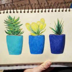 Three Little Succulents by EevyLynn
