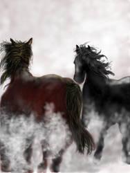wild horses. by josephhutchison