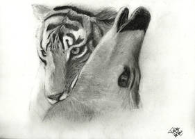 Tiger and It's Prey by TessJa