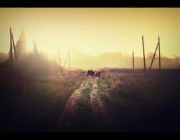 The Road by calincio