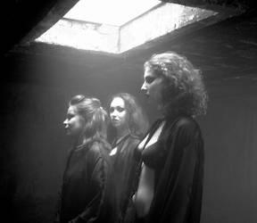 Vampire Women Mujeres Vampiro by Erasmono