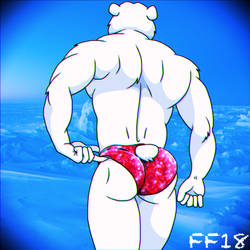 Polar Bear Xmas Speedos  by FabFelipe